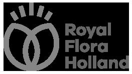 Royal FloraHolland Logo Klantervaring Bigfish Animatie Studio